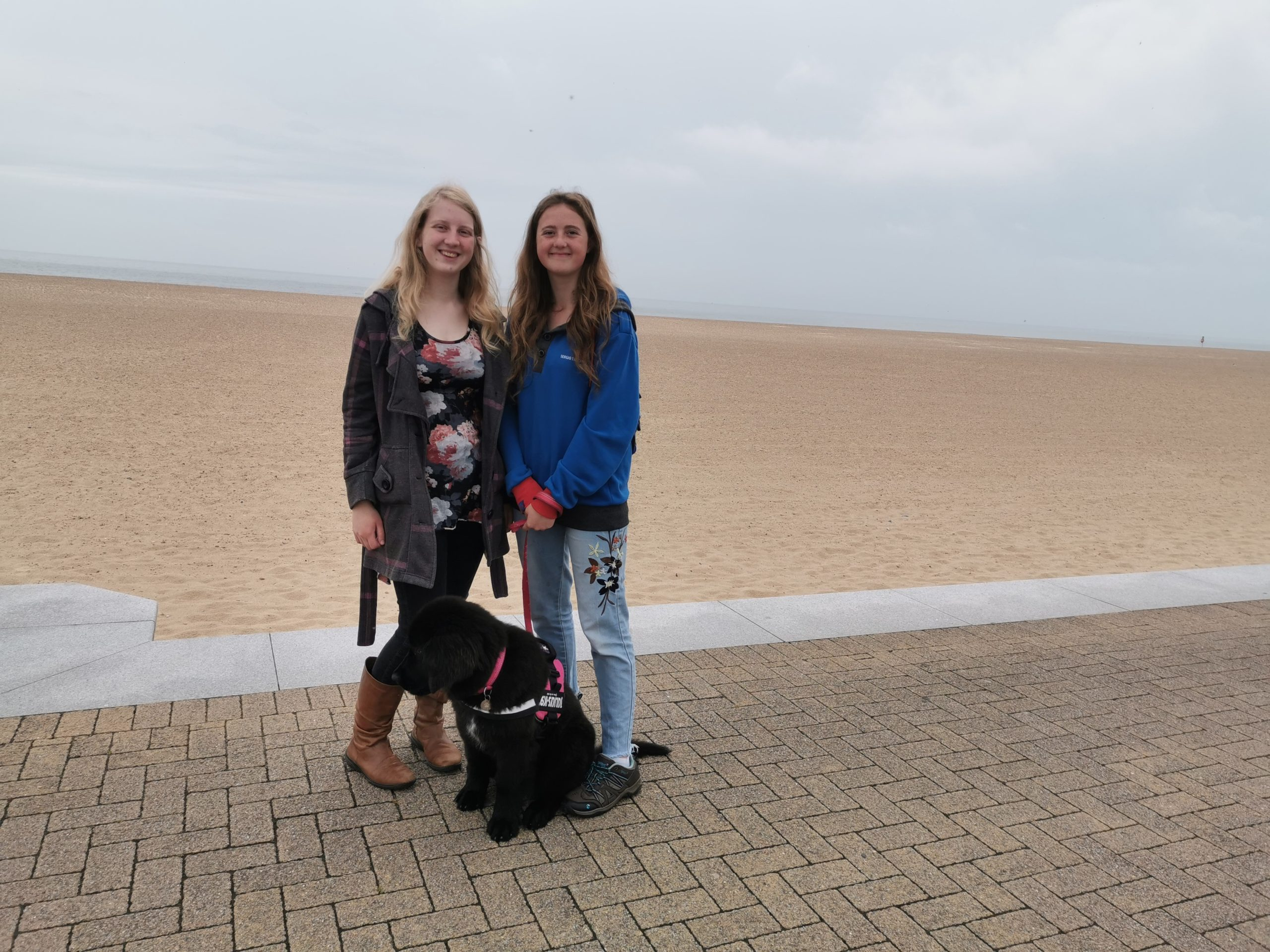 Dog Friendly Great Yarmouth Beaches - Great Yarmouth Beach central