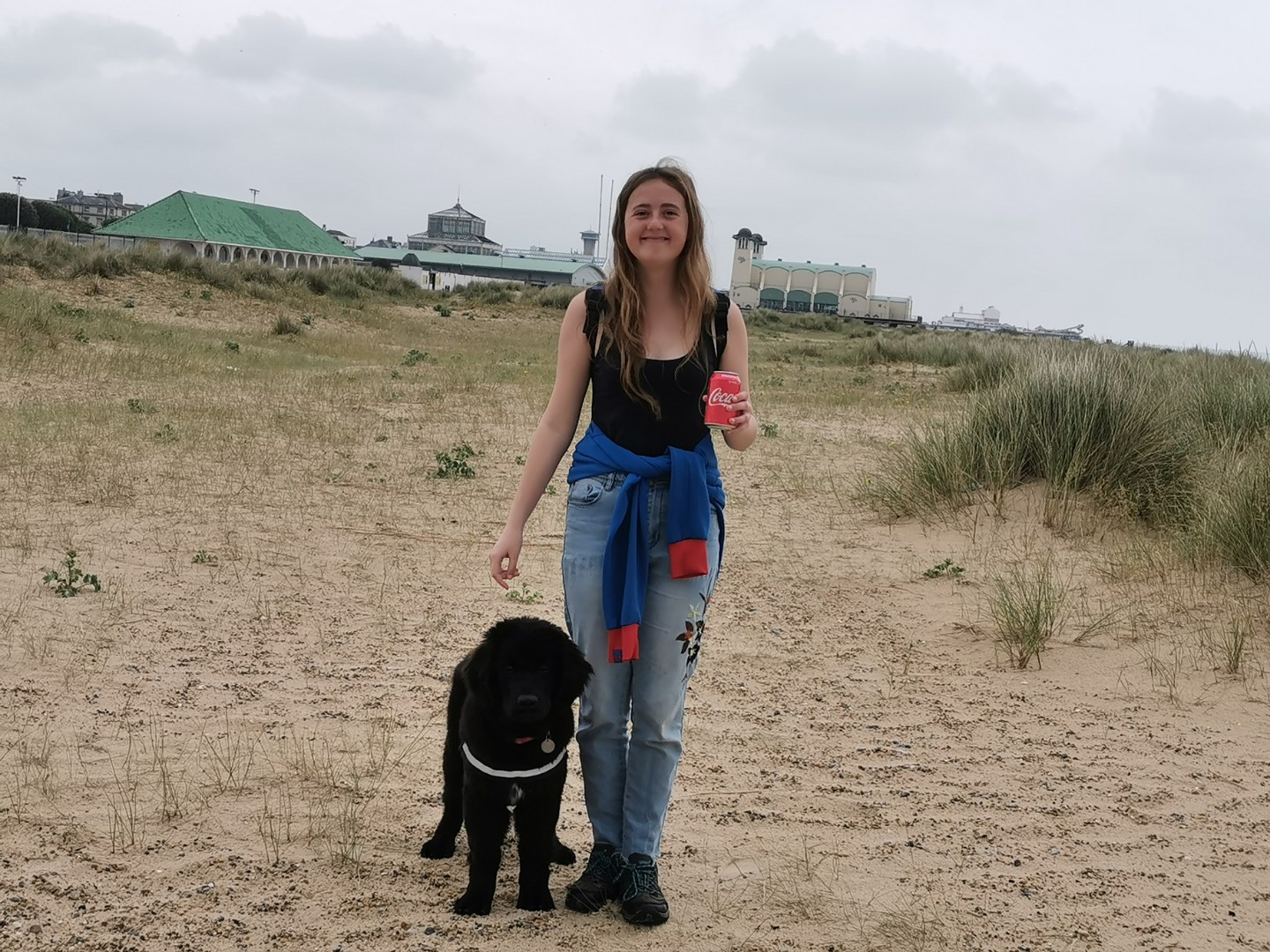 Dog Friendly Great Yarmouth Beaches - Great Yarmouth Beach South