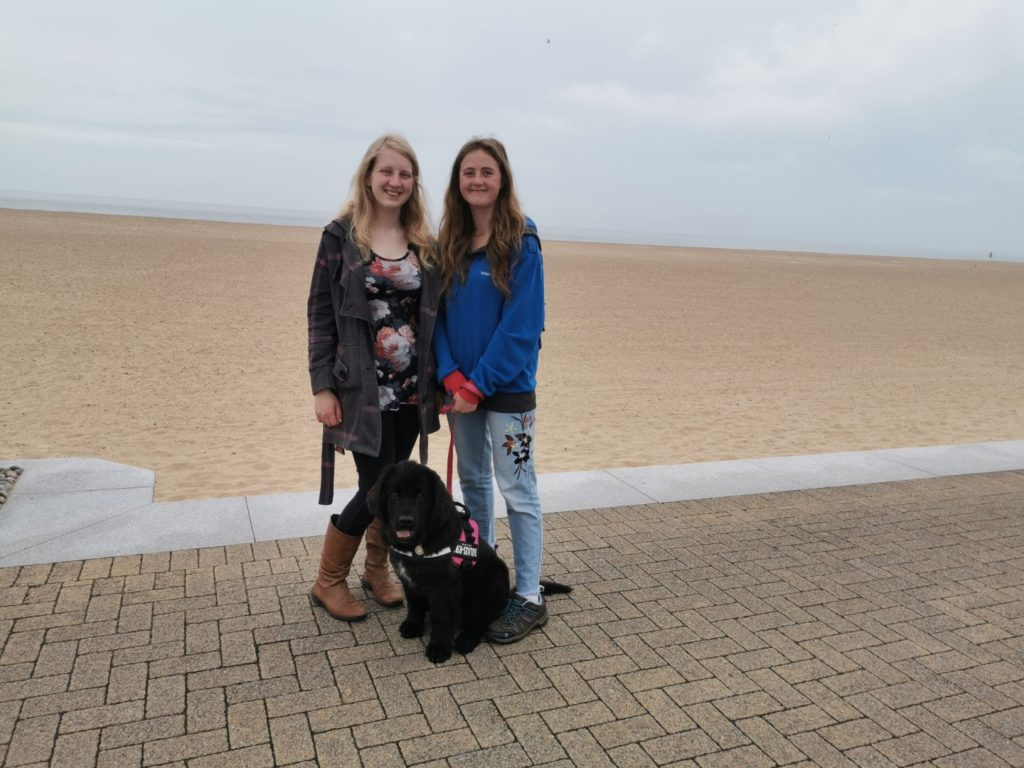 Dog Friendly Beaches Great Yarmouth - Central Beach