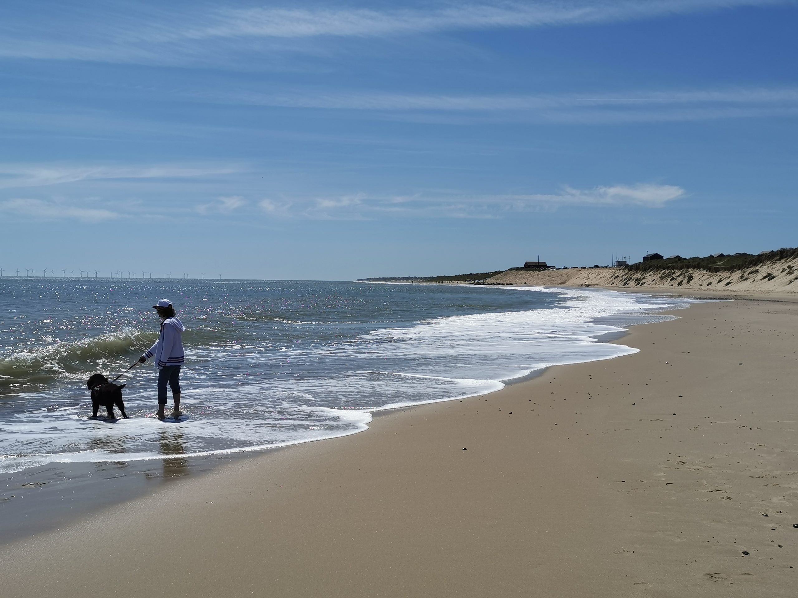 Dog Friendly Great Yarmouth Beaches - winterton beach